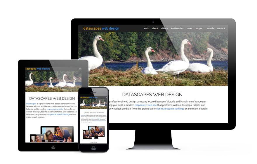 Datascapes Web Design - Victoria and Nanaimo on Vancouver Island